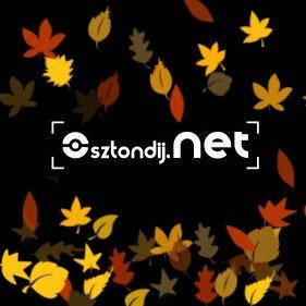 Forrás: Ösztöndíj.NET