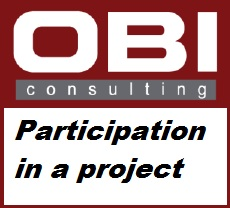 obi_consulting_participation_in_a_project