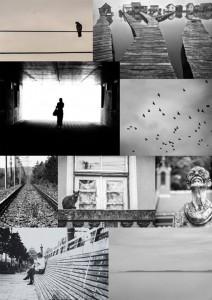 Pannon Egyetem Fotókor_kiallitas montazs