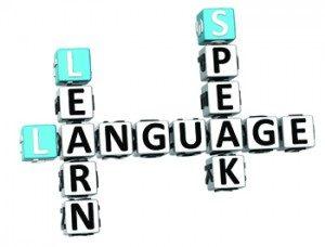 Nyelvi szintfelmérő