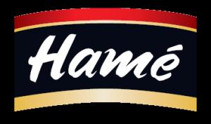 Pénzügyi asszisztensi álláslehetőség a Hame Hungária Kft.-nél