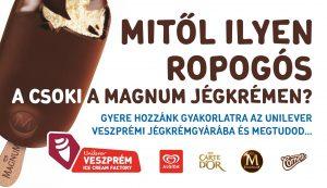 Nyári gyakorlat az Unilever Veszprémi Jégkrémgyárban